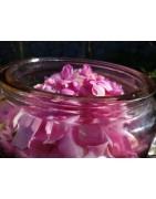 Synergies aromatiques, mélange d'hydrolats 100% naturels