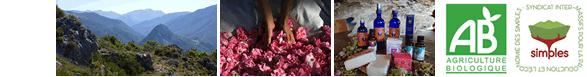 verdon roses et aromes, producteur huiles aromatiques vente directe bio
